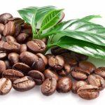 Espresso Catering Service