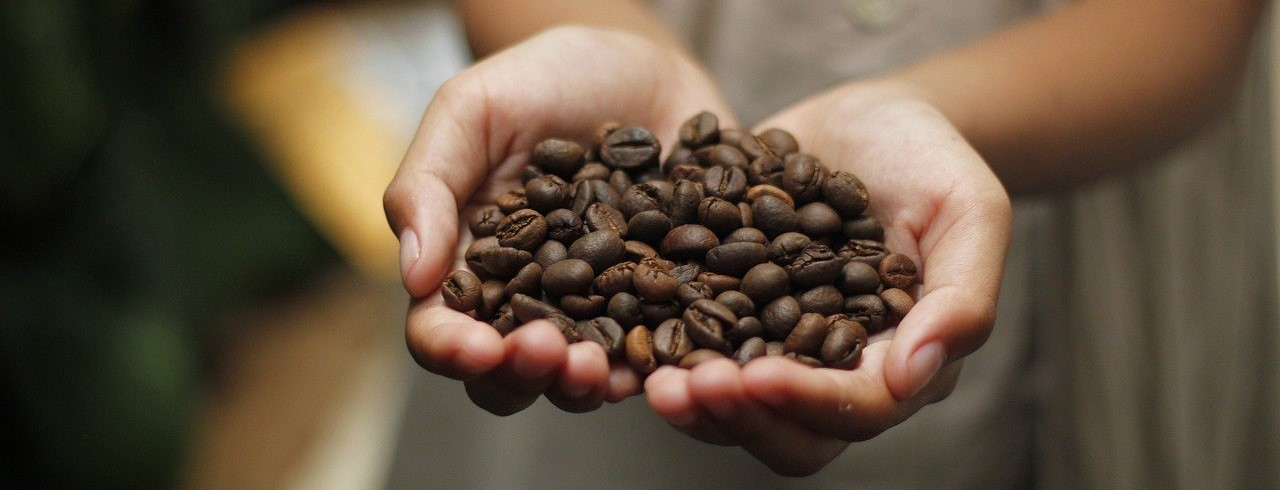 How Does Climate Change Affect the Coffee World?