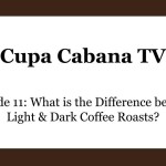 What is teh difference between light and dark coffee roasts