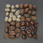 What Makes A Coffee Bean Special?